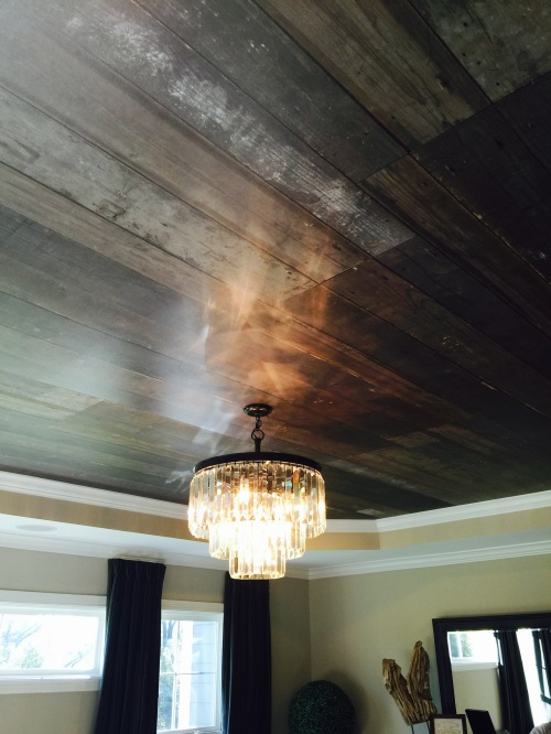 Wood Ceiling...nice contrast with Lighting!